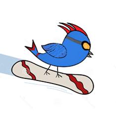 skicentrum Heerhugowaard krokus